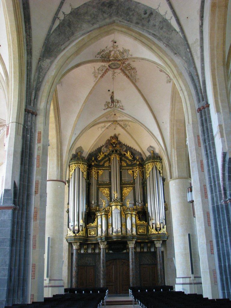 Martinikerk Groningen Omlijsting Gotische Orgel